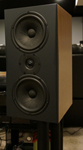 Triad Gold Monitors and Silver Subwoofer